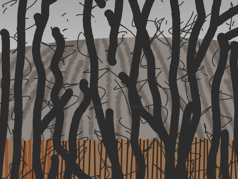 Gerald Shepherd - Winter Fields Behind Trees