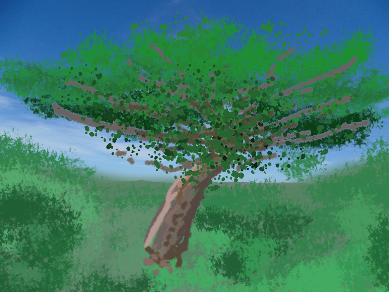 Gerald Shepherd - A Tree Study
