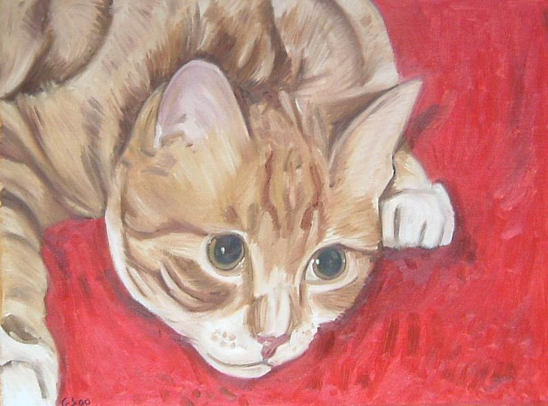 Gerald Shepherd - Sandy (Cat)