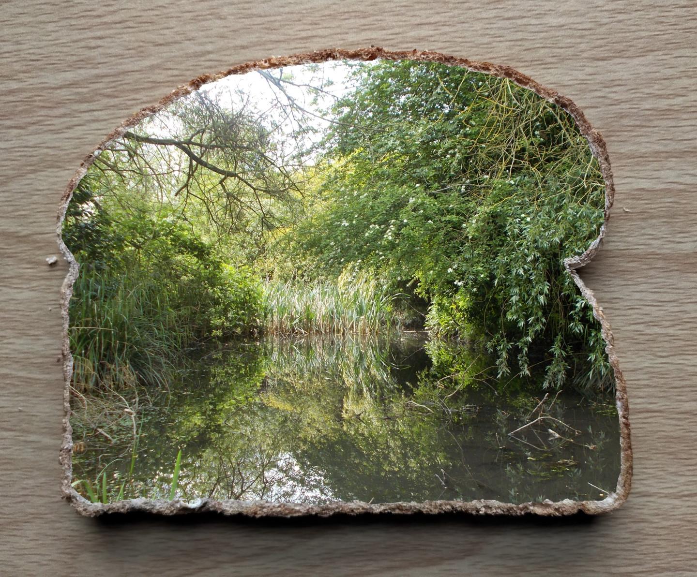 Gerald Shepherd - Landscape Slice