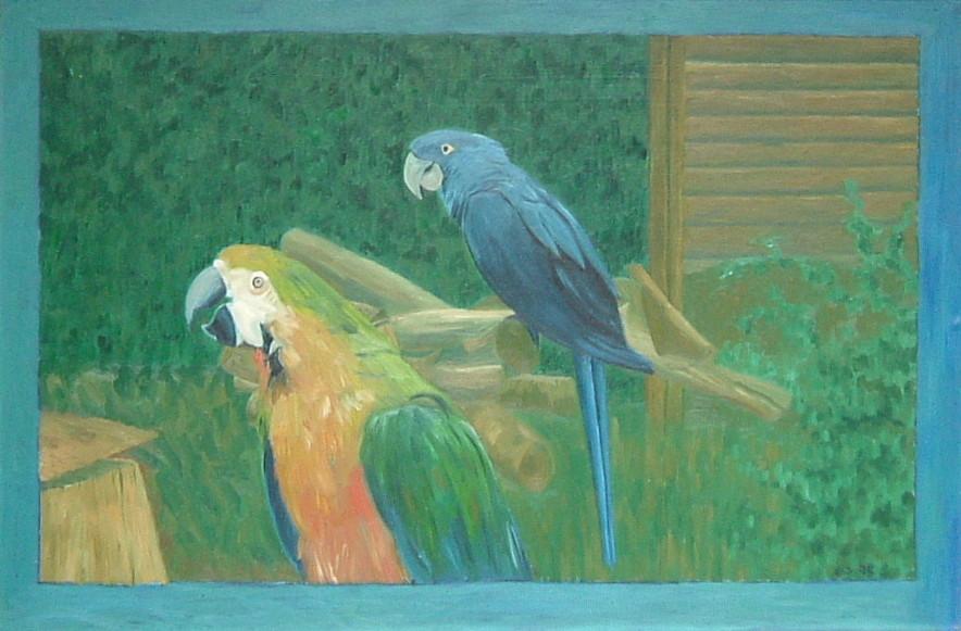 Gerald Shepherd - Parrots