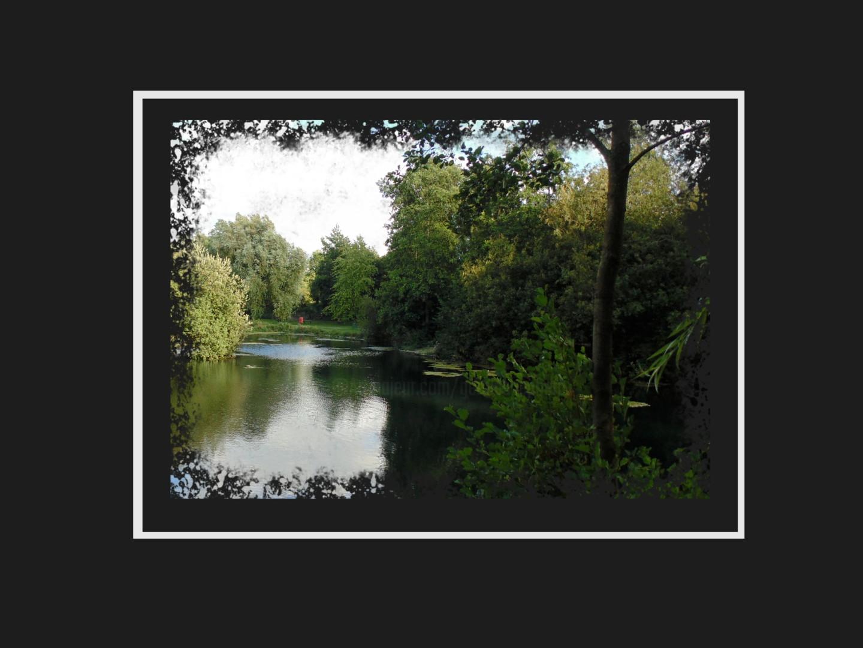 Gerald Shepherd - Postcard From A Wet Place