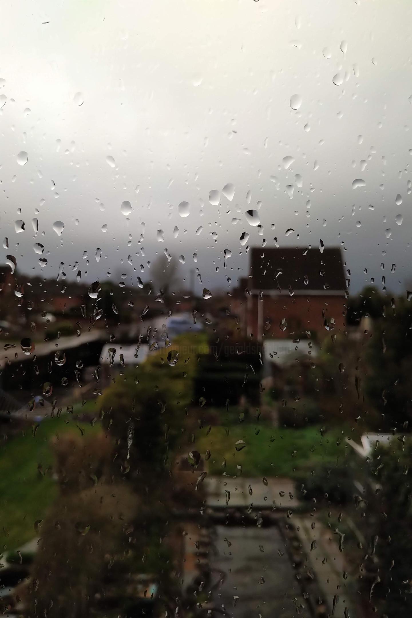 Gerald Shepherd - Wet Day Window