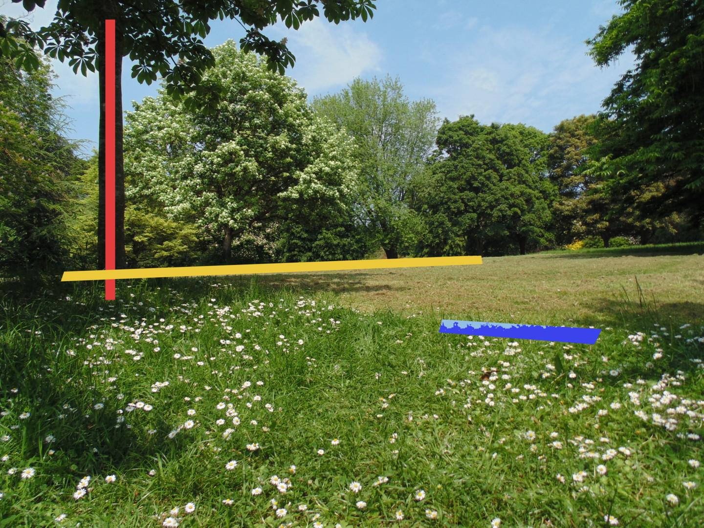 Gerald Shepherd - Three Lines Found In Nature