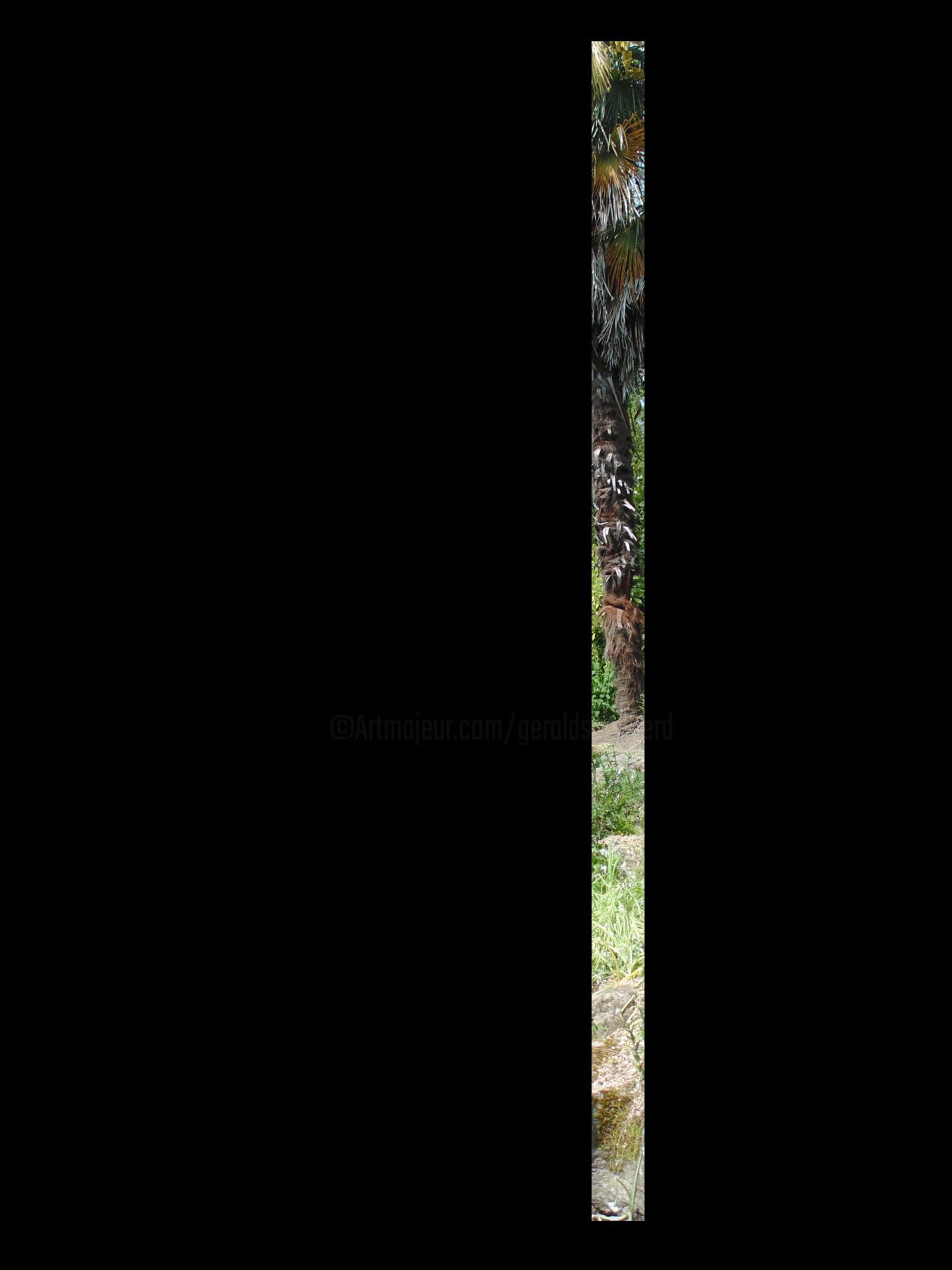 Gerald Shepherd - Vertical line