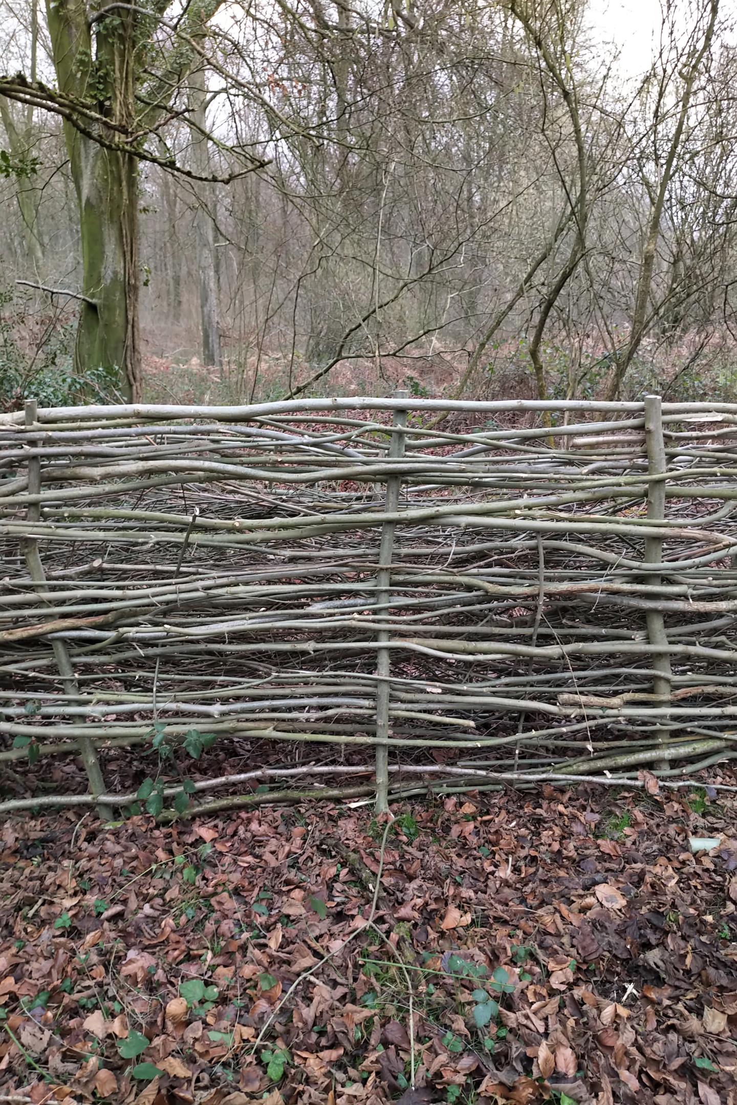 Gerald Shepherd - A Dead Hedge