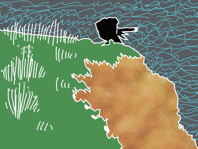 Gerald Shepherd - Rook On A Cliff Top
