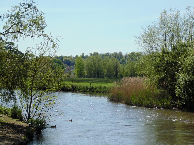 Gerald Shepherd - Tranquil River
