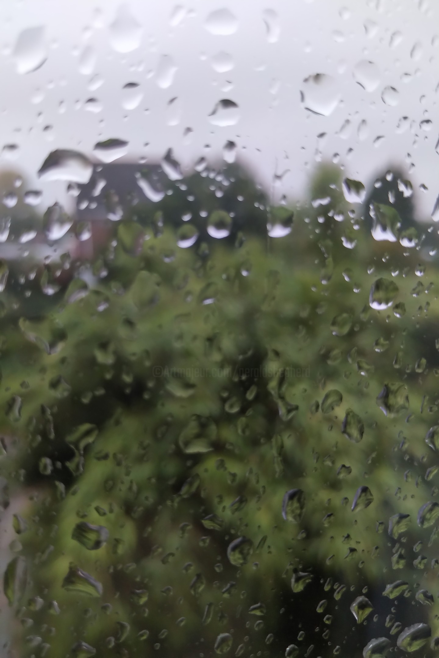 Gerald Shepherd - Wet Window