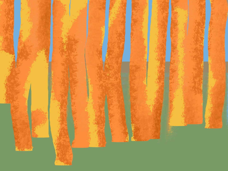 Gerald Shepherd - Orange Trees