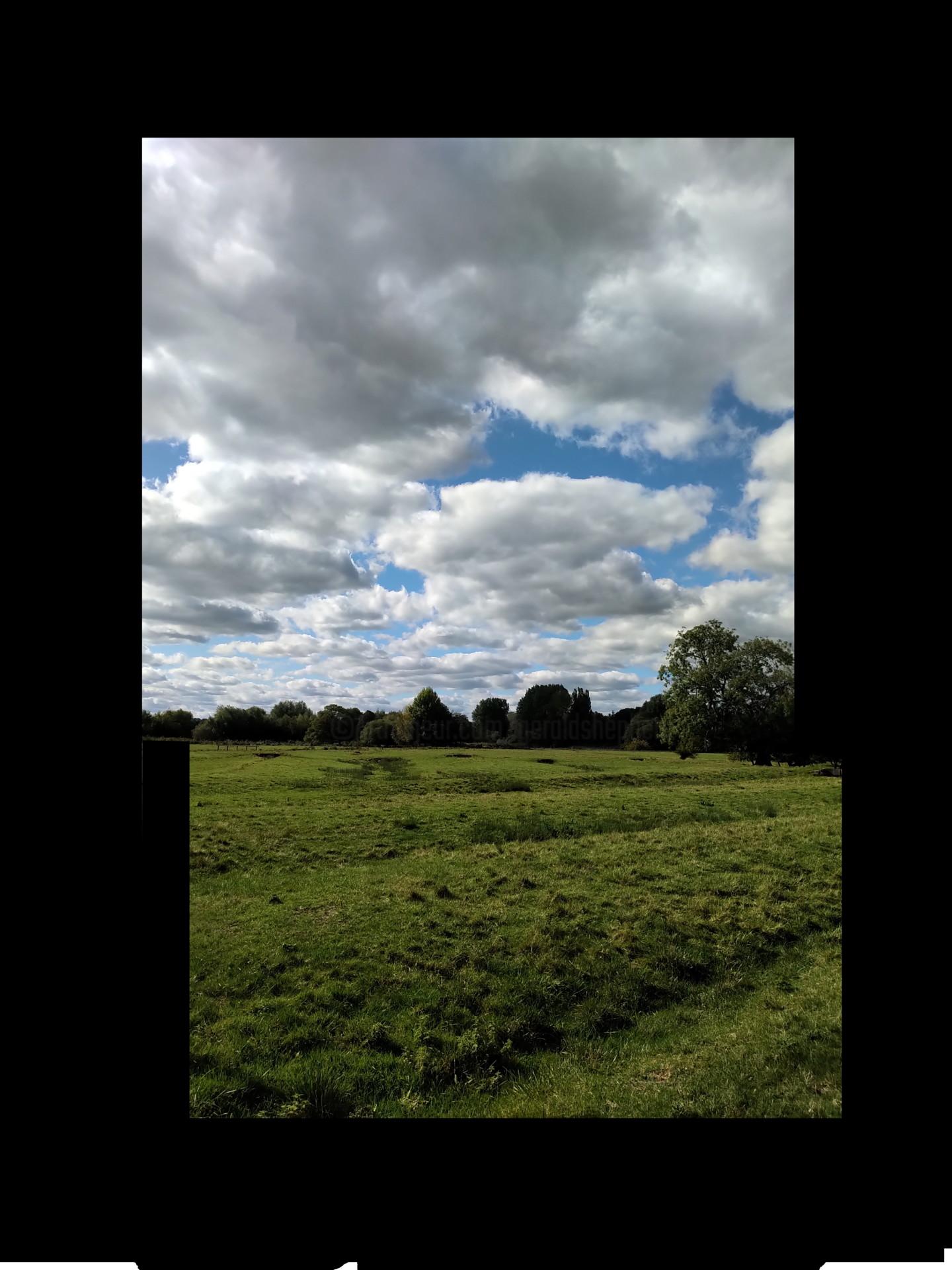Gerald Shepherd - Altered Field