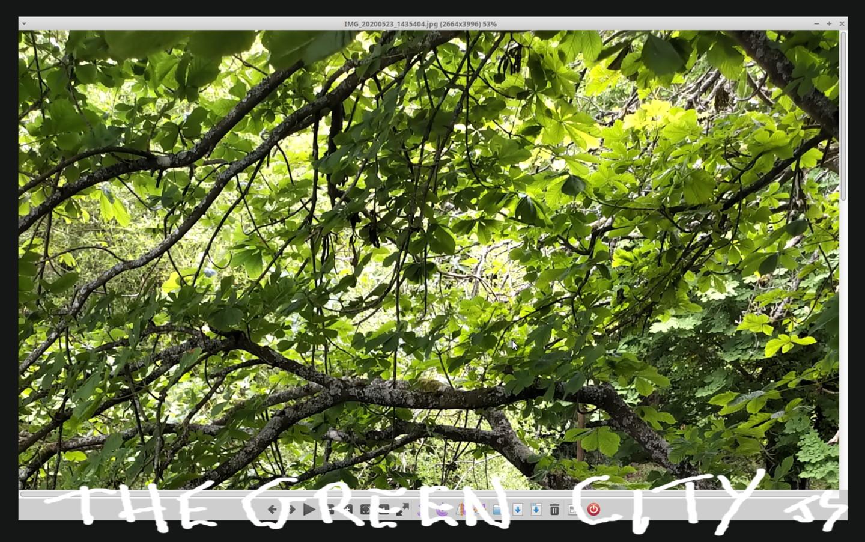 Gerald Shepherd - The Green City
