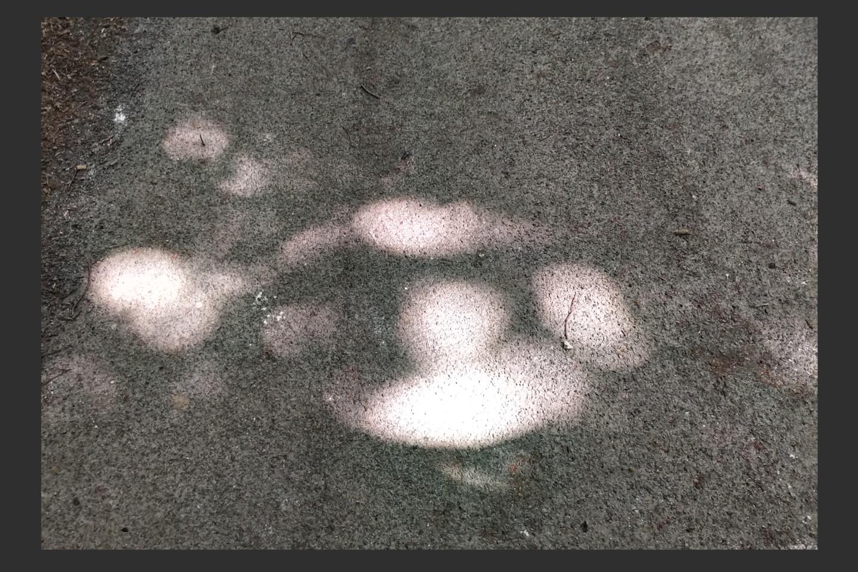 Gerald Shepherd - Abstract Apollo