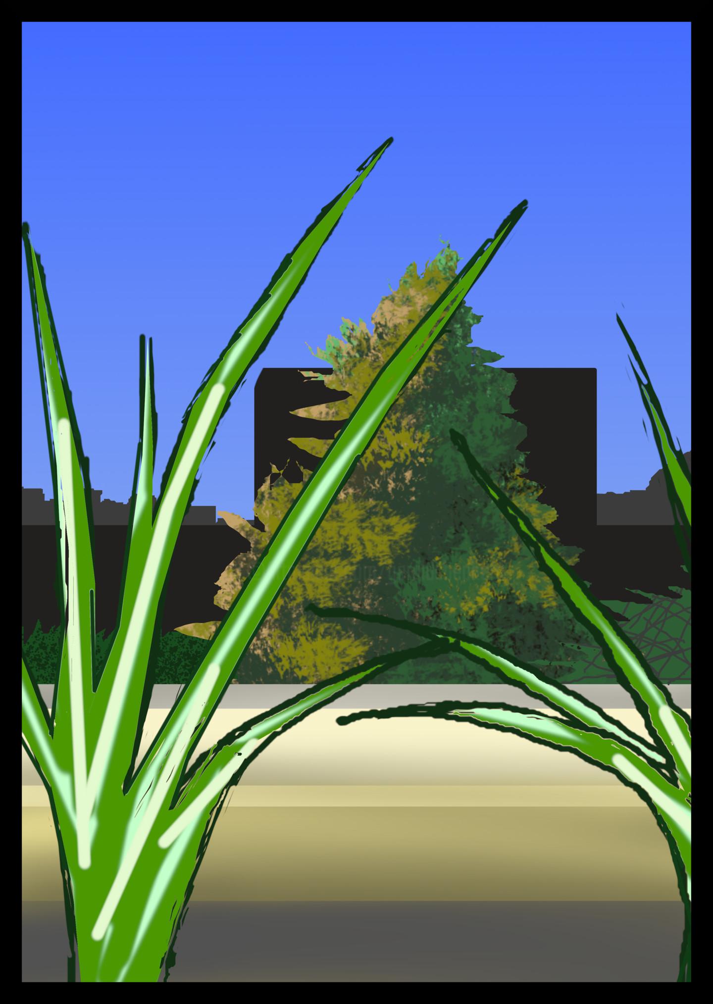 Gerald Shepherd - Spider Plants