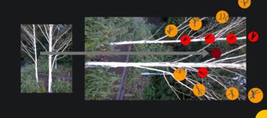 Signal Relays