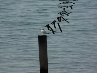 Tern Turned