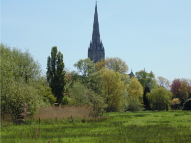 Salisbury Cathedral From A Distance