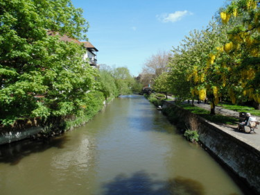 The Avon In Salisbury