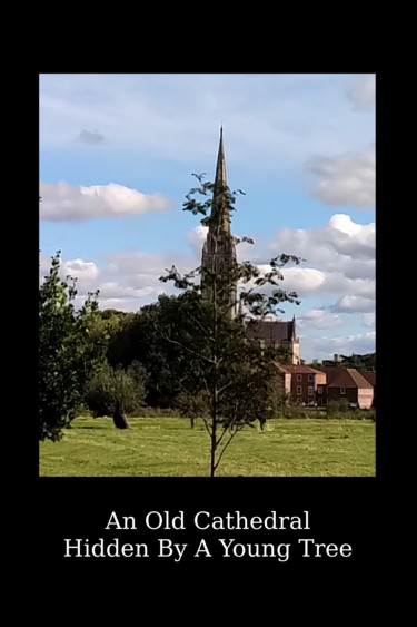 An Old Cathedral Hidden By A Young Tree