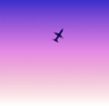 High Plane Study
