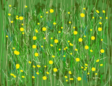 The Buttercup Field