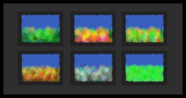 Landscape Phases