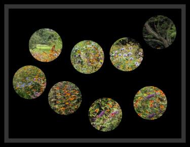 Peephole Flowers 3