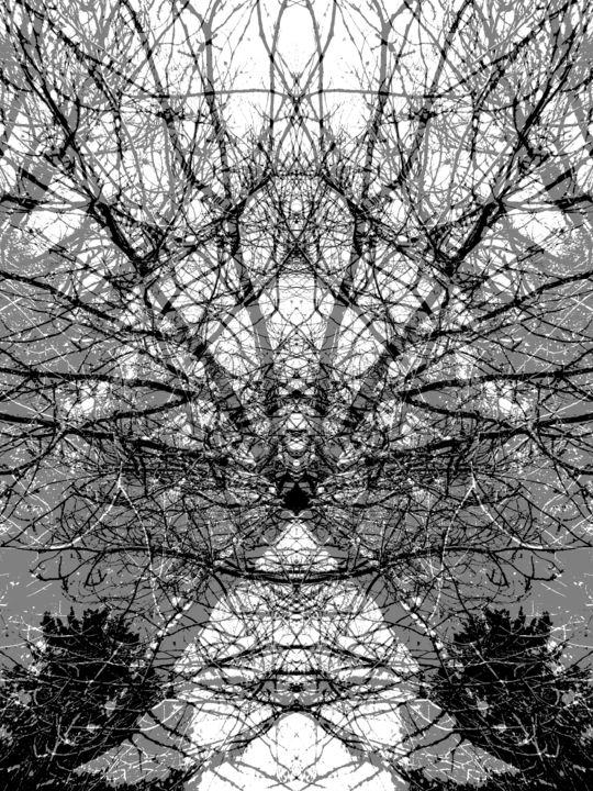 Gerald Edward William Shepherd - Diagonals