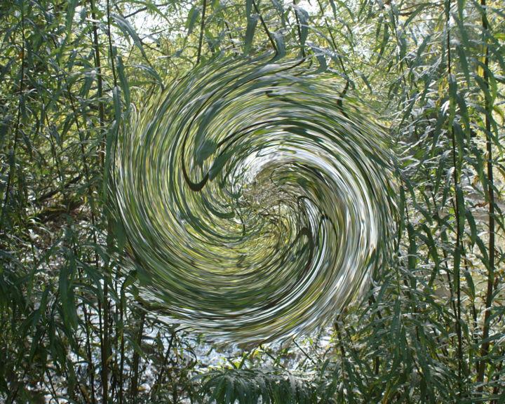 Gerald E. W. Shepherd - The Swirl