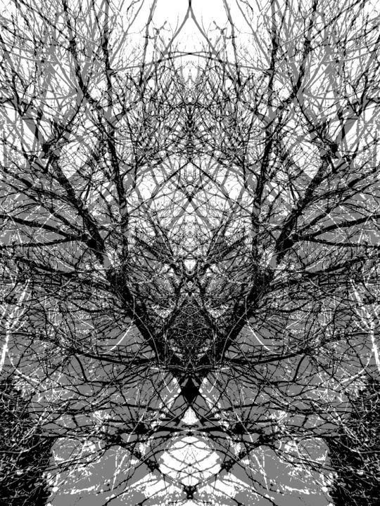 Gerald Shepherd - Diagonals.jpg