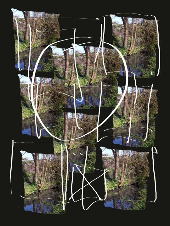 Gerald E. W. Shepherd - Reflected Tree Focus