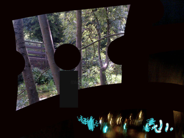 Gerald E. W. Shepherd - Window Onto The Wood