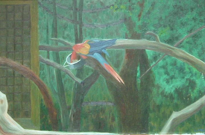Gerald Shepherd - Parrot