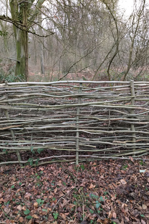 Gerald Edward William Shepherd - A Dead Hedge
