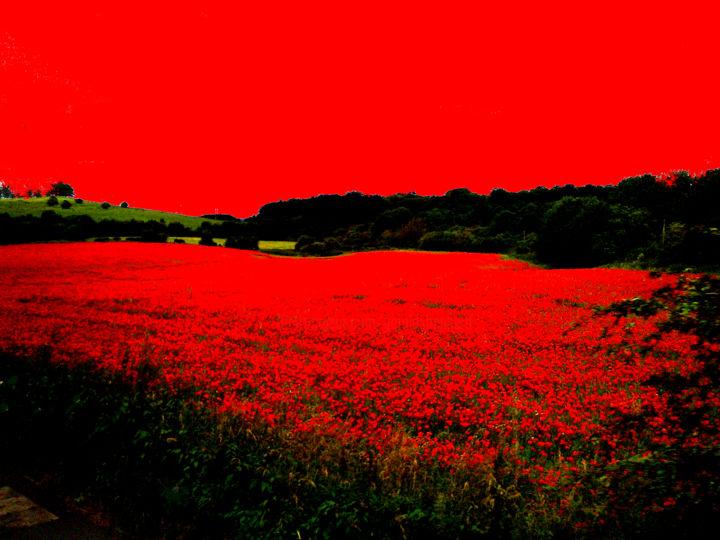 Gerald E. W. Shepherd - Red Landscape