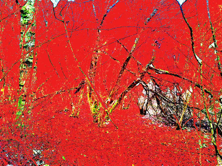 Gerald E. W. Shepherd - Red Forest