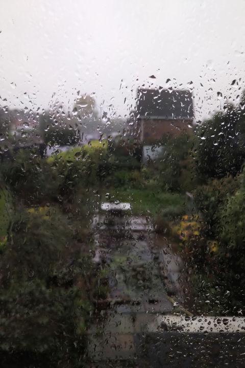 Gerald Shepherd - The Wet Garden