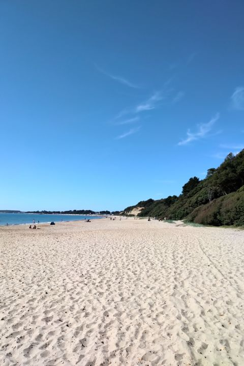 Gerald Shepherd - Beach Space